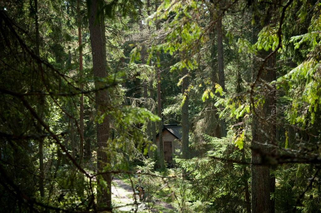pilgrims hut