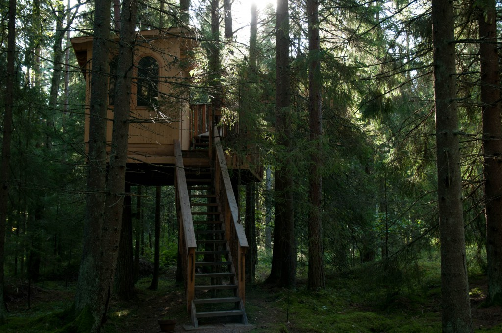 tree house hidden in the woods